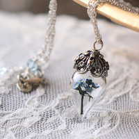 Blue Forget Me Not Flower Terrarium Necklace by WoodlandBelle