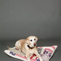 Free People Vintage Flag Dog Bed