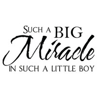 Such a Big Miracle in Such a Little Boy - Baby Nursery Vinyl Wall Decal Quote Lettering - Baby Boy Nursery Wall Art 18H x 36W BQ001