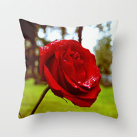 Single red rose Throw Pillow by Vorona Photography | Society6