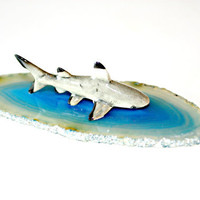 Shark on Agate Slice Sculpture - Porcelain Black Tip Reef Miniature Figurine on Ocean Blue Agate Slice Home Decor Collectible by Mei Faith