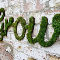 Moss Graffiti By Anna Garforth: Admire It &amp; Make It