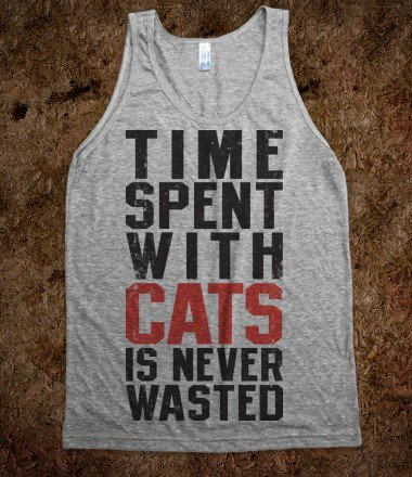 Time Spent With Cats Is Never Wasted - Totally Awesome Text Tees