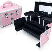 Amazon.com: Seya Pink Studio Case: Beauty