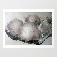 Furry Crystal  Art Print by Revital Naumovsky
