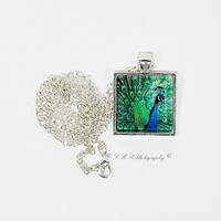 Photo Pendant Necklace, Photo Glass Tile Necklace, Glass Tile Necklace, Peacock Pendant Necklace