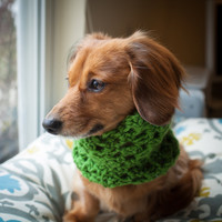 FREE SHIPPING Puppy Scarf Dog scarf cowl dachshund by AbbeyGrim