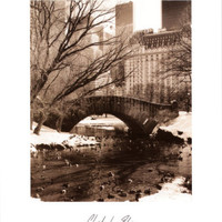 Central Park Bridge IV Print by Christopher Bliss