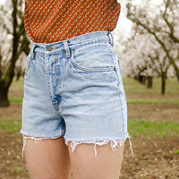 High Waisted Light Wash Shorts by TheOpSpot on Etsy