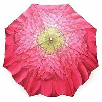 Gerbera Daisy Umbrella