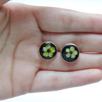 Real flower stud earrings. Green and black ear stud in resin. Pressed flower jewelry. Gift for her. Botanical jewelry.