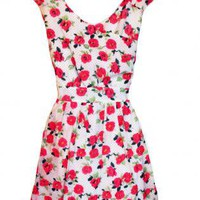 Vintage Inspired Rose and Polka Dot Print Dress