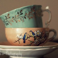 Tea Cups - 8x10 Fine Art Photograph