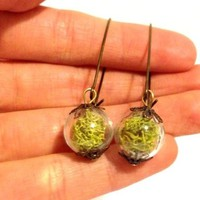Glass orb moss earrings