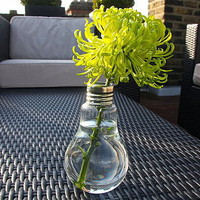 funky lightbulb vase by the london garden trading company | notonthehighstreet.com