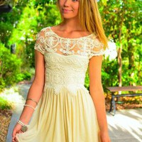 Vintage Inspired Lace Top Dress with Pleated Mesh Skirt