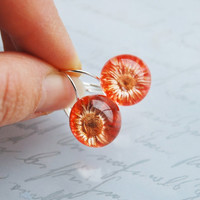 Mini Pressed Flower Earrings Real Flower Resin Ball Orange Daisy Orb Globe Pressed Flower Jewelry Crystal Clear Petite Mother&#x27;s Day