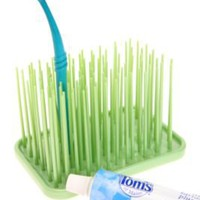 UrbanOutfitters.com > Grassy Green Toothbrush Holder