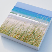 Beach grass photo blocks x 3 beach art - home decor
