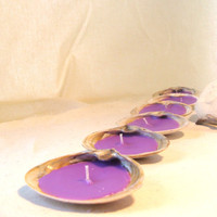 Candles Tealight Seashells Ocean Lavender Clam Shells by earthluv