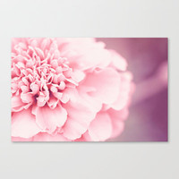 Spring  Stretched Canvas by Bree Madden