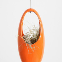 Hanging Egg Planter