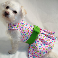 RockinDogs Multicolor Polka Dot Spring Dog Harness by Rockindogs