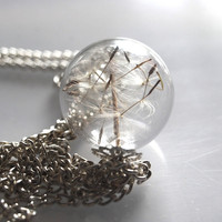 Real Dandelion Necklace  Dandelion Seeds by NaturalPrettyThings