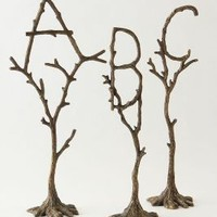 Tree Monogram - Anthropologie.com
