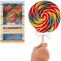 HAMMOND&#x27;S ORIGINAL GIANT RAINBOW BLAST LOLLIPOP