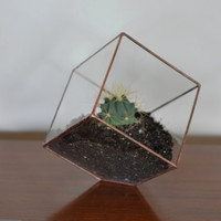Earth Terrarium Kit, medium cube glass planter in copper or silver color -- stained glass -- terrarium supplies -- eco friendly