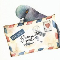 Messenger pigeon art by amberalexander on Etsy