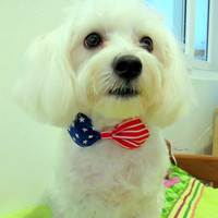 Patriotic Dog Bow Tie Collar by furkidscloset on Etsy