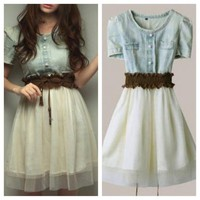 Simply Denim Ballerina dress