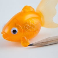 Goldfish Pencil Sharpener - See Jane Work
