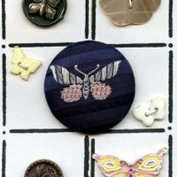 Card of Butterfly buttons vintage and modern buttons