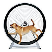 Gopet- Treadwheel For Large Dogs: Pet Supplies