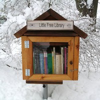 Make a Free Little Library for the Neighborhood