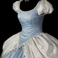 Adult Silk Cinderella Costume Custom Made