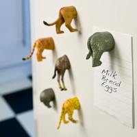 Animal Butt Magnets at Firebox.com