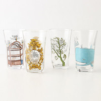 Menagerie Juice Glass