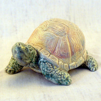 "Ceramic Box Turtle ""On the Move"""