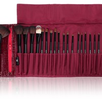 falseSHANY Cosmetics NY Collection Pro Brush Kit, 13 Ounce (22 Piece Mix Natural or Synthetic with Purple Faux Crocodile Case) $24.22