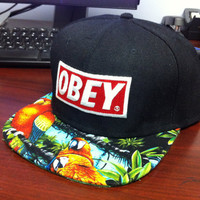 Custom obey SnapBack