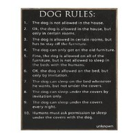 "Amazon.com: ""DOG RULES"" - Humorous Wooden Wall Sign: Home & Kitchen"