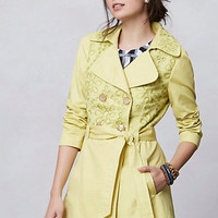 Pinta Eyelet Trench