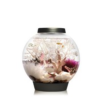 Baby biOrb Aquarium with LED Light, Black, 4 Gallons: Pet Supplies