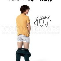 One Direction Harry Styles Poster Photo Signed PP 2012 A4 Size 21cm x 29.7cm