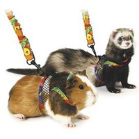 Super Pet Comfort Harness and Leash - PetGadgets.com