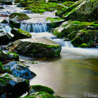 Nature Photography, Magical Spring Creek, Set of 3 Photo Cards, Blue Water, Waterfall, Reflections, Mossy Rocks, Fairy Land, Spring Photo